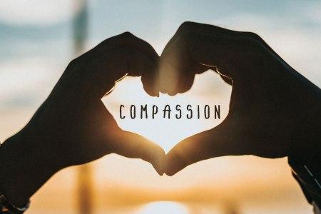 compassion_insidewink